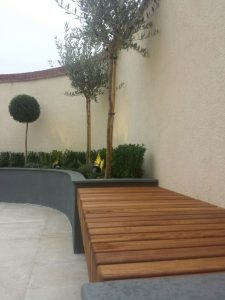 contemporary-garden (1)